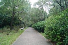 Landscape green belt Royalty Free Stock Image