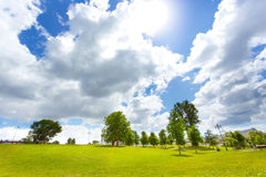 Landscape with green deciduous trees, blue sky and clouds Royalty Free Stock Image