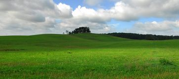 Landscape with green field. And cloudy sky Stock Images