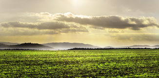Landscape with green field and dramatic sky Royalty Free Stock Images
