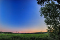 Landscape of a green field at the dusk Stock Photography