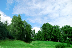 Landscape of a green field with trees. And a bright blue sky Stock Photos
