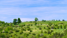 Landscape of a green field with trees and floating clouds. Timelapse stock video footage