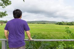 Landscape of green forest with back of asian man tourist traveller in the mountain Stock Image