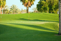Landscape of green golf course Stock Photography