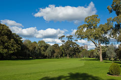 Landscape of a green golf field Stock Images