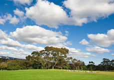 Landscape of a green golf field Royalty Free Stock Image