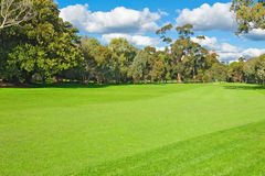 Landscape of a green golf field Royalty Free Stock Photo