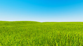 Landscape green grass blue sky 3d rendering Royalty Free Stock Image