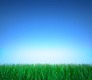 Landscape: green grass, clear blue sky. 3D image Royalty Free Stock Photos