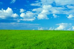 Landscape with green grass and cloudy sky Royalty Free Stock Images