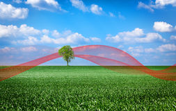 Landscape with green Royalty Free Stock Photo