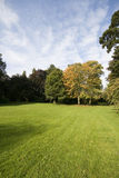 Landscape with green grass and trees royalty free stock photography