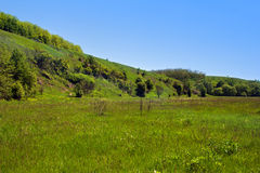 Landscape of a green grassy hills, valley, trees and blue sky Stock Photography