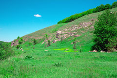 Landscape of a green grassy hills, valley, trees and blue sky wi Royalty Free Stock Image