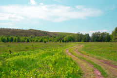 Landscape of a green grassy valley with footpath, trees, hills a Royalty Free Stock Photos