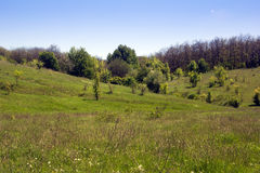 Landscape of a green grassy valley, hills with forest and sky Royalty Free Stock Image
