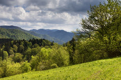 Landscape of green hills of mountains Royalty Free Stock Photo