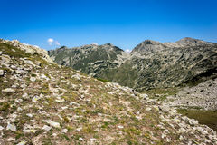 Landscape of Green hills in Pirin Mountain Stock Images