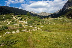 Landscape of Green hills in Pirin Mountain Royalty Free Stock Photos