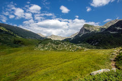 Landscape of Green hills in Pirin Mountain Stock Photo