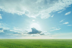 Landscape of green meadow and blue sky Stock Images