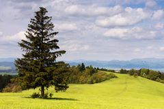 Landscape of green meadow and mountains Stock Images