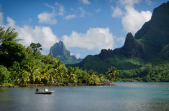 Landscape on green Moorea Royalty Free Stock Image