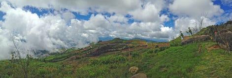 Landscape. Green Mountain, Phu tub berk, Thailand Stock Photos