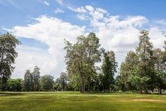 Landscape green park stock photography