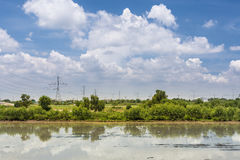 Landscape of green rice field and blue sky and clouds with reflection in wate. R Royalty Free Stock Photography
