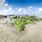 Landscape with green rocks beach, the sea and the beautiful clou Stock Photos
