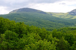 Landscape of green trees over mountains. In village Bogatyr, Bakhchisaray district, Crimea Royalty Free Stock Image