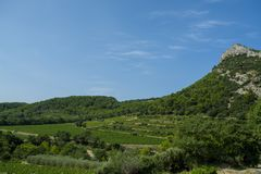 Landscape with green vineyards in Luberon, Privence, France. Landscape with green vineyards and mountains in Luberon, Privence, France stock photography