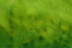 Landscape green watercolor grass field with blur trees background