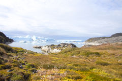 Landscape greenland. Greenland landscape near the fiord ilullissat Royalty Free Stock Photography