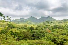 Landscape in Grenada, Caribbean. Taken in Grenada Capital City, St. George Royalty Free Stock Photo