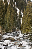 Landscape in Grigoriev gorge. Kyrgyzstan Stock Images