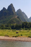 Landscape in Guilin, China Royalty Free Stock Photography