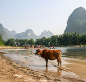 The landscape in guilin, china Stock Photo