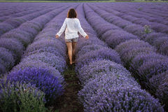 Landscape with happy and joyful woman in a lavander field Royalty Free Stock Photos