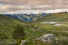 Landscape of Hardangervidda near Odda Royalty Free Stock Photography