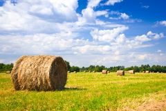 Landscape with harvested bales Stock Photos