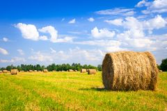Landscape with harvested bales Stock Photography