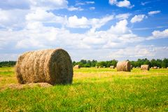 Landscape with harvested bales Stock Images