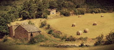 Landscape with harvested bales of straw in field Royalty Free Stock Images