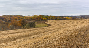 Landscape with harvested cereals field in Ukraine Royalty Free Stock Photography