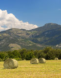 Landscape in Haute Provence Royalty Free Stock Images