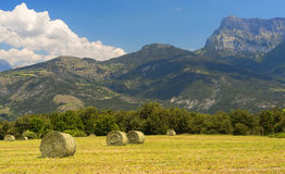 Landscape in Haute Provence Stock Photo