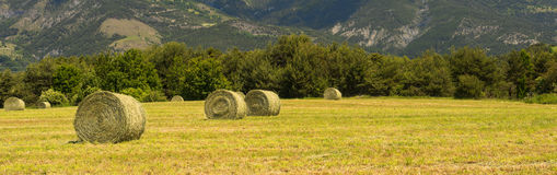 Landscape in Haute Provence Stock Photography